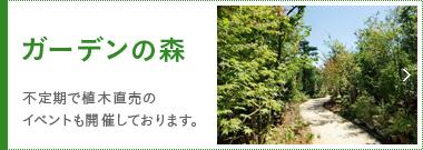ガーデンの森