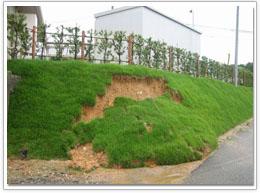 石積みの法面